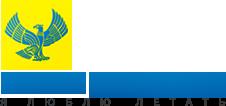 Авиакомпания Авиалинии Дагестана (Dagestan Airlines) логотип